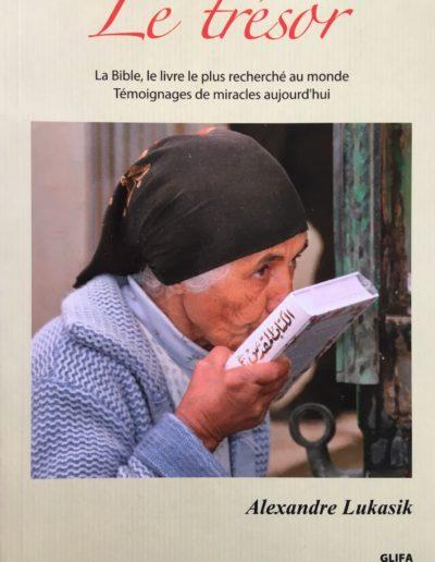 Le Trésor (2011)